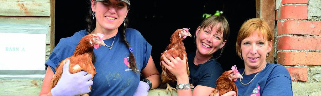 Women with hens Hens Trust