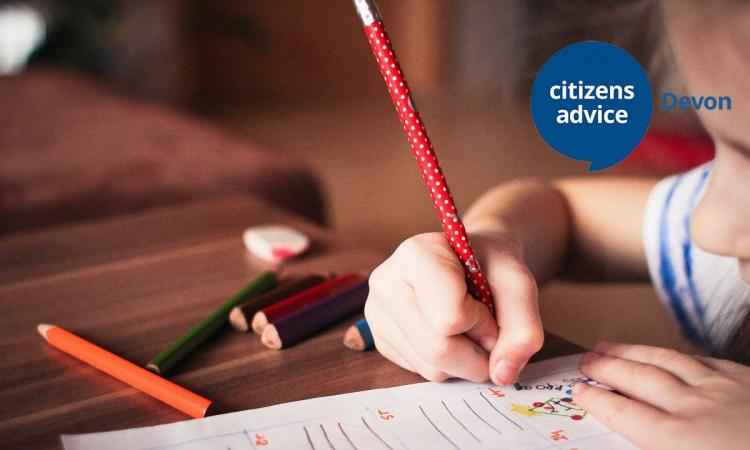 Citizens Advice Devon training - disability allowance and pip